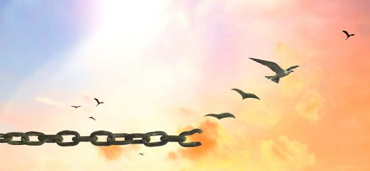 cadenas vuela